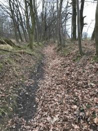 Nicht ins Heft gelangt: Objekt von Lokaltermin, der heutige Zustand des Flüsschens Lober. Ein Graben, der schon seit bald 40 Jahren trocken liegt.